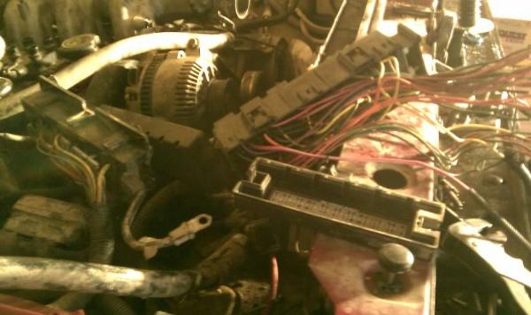 Wiring Diagram Also 1986 Ford Bronco Wiring Diagram Moreover 1995 Ford