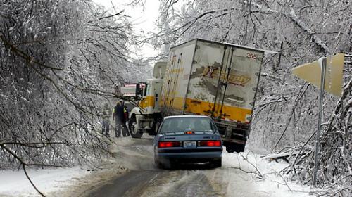 Snow Storm Survival