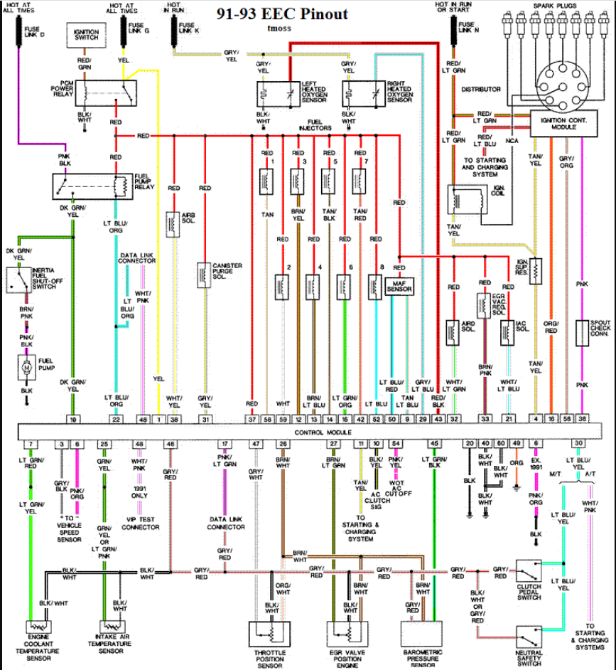 Colored Diagram.PNG