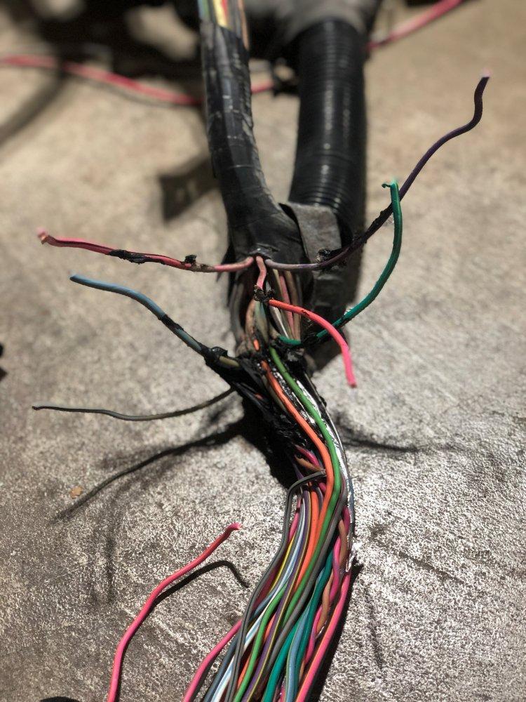 Ranger Near computer wires.jpg