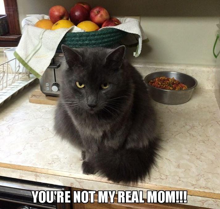 real mom.jpg