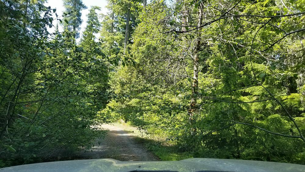 trans_america_trail_2019_ford_ranger_day-14-10.JPG